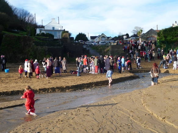 Myrtleville Christmas Swim 2012 - view from the waterline
