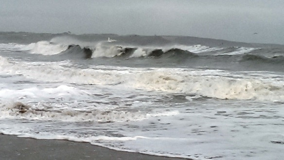 Open water, sea swimming in Cork, Ireland