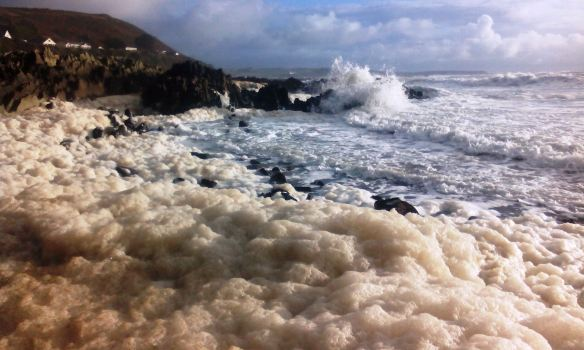 Fluffy beach - November 19, 2014