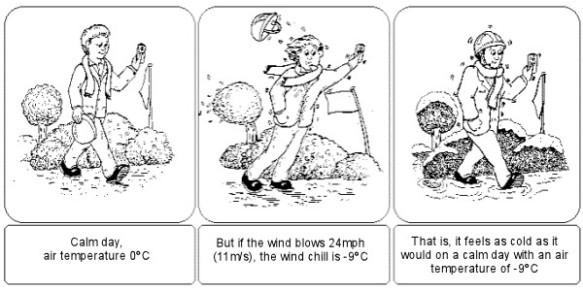 windchill_cartoon_600
